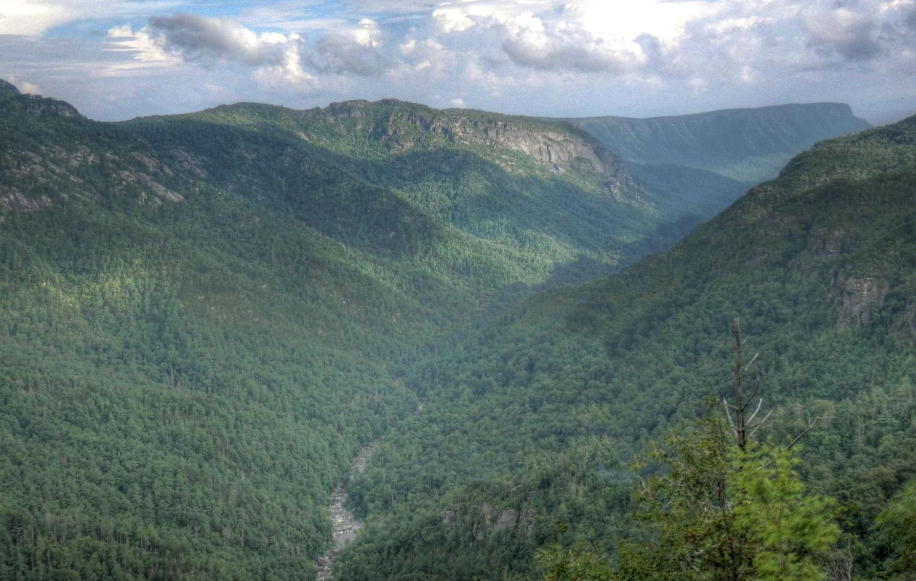 linville gorge trail map pdf