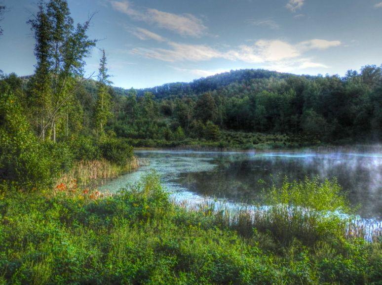 Otter Pond Green