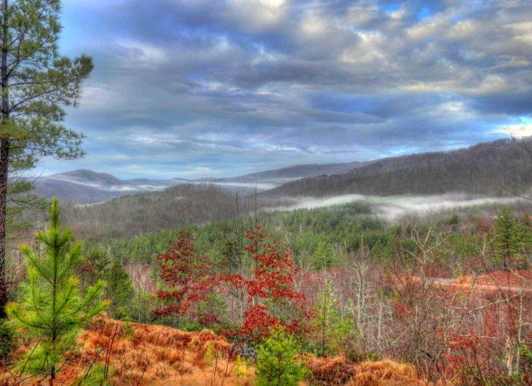 Wolfpen Mountain Fog