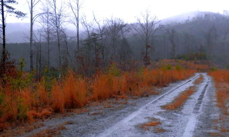 Carolina Peaks Parkway
