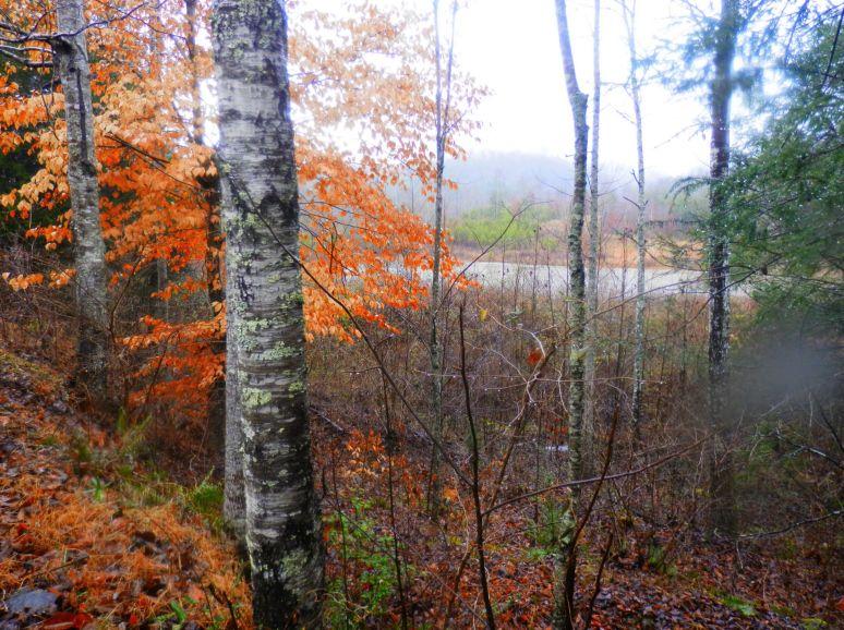 Otter Pond Dam