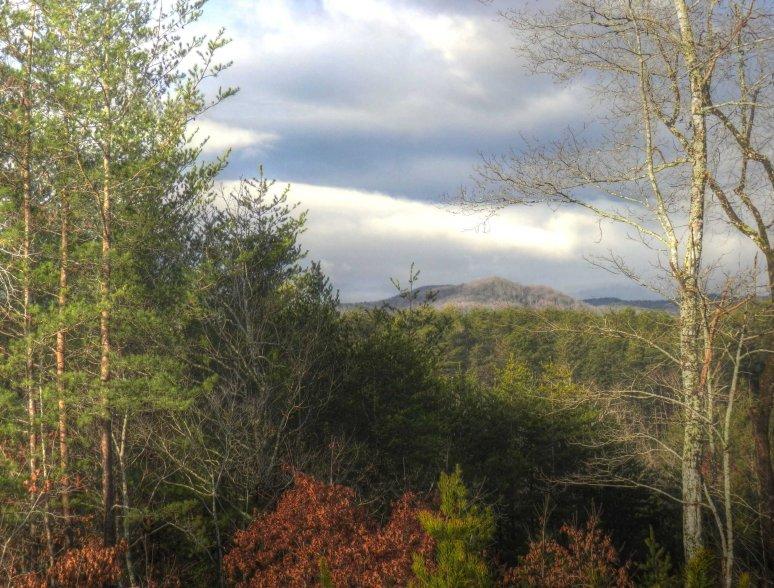 Roan Horsetop Mountain in Sun