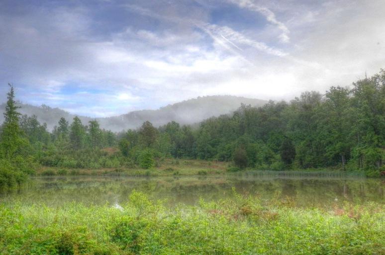 Oak Mountain Rutherford