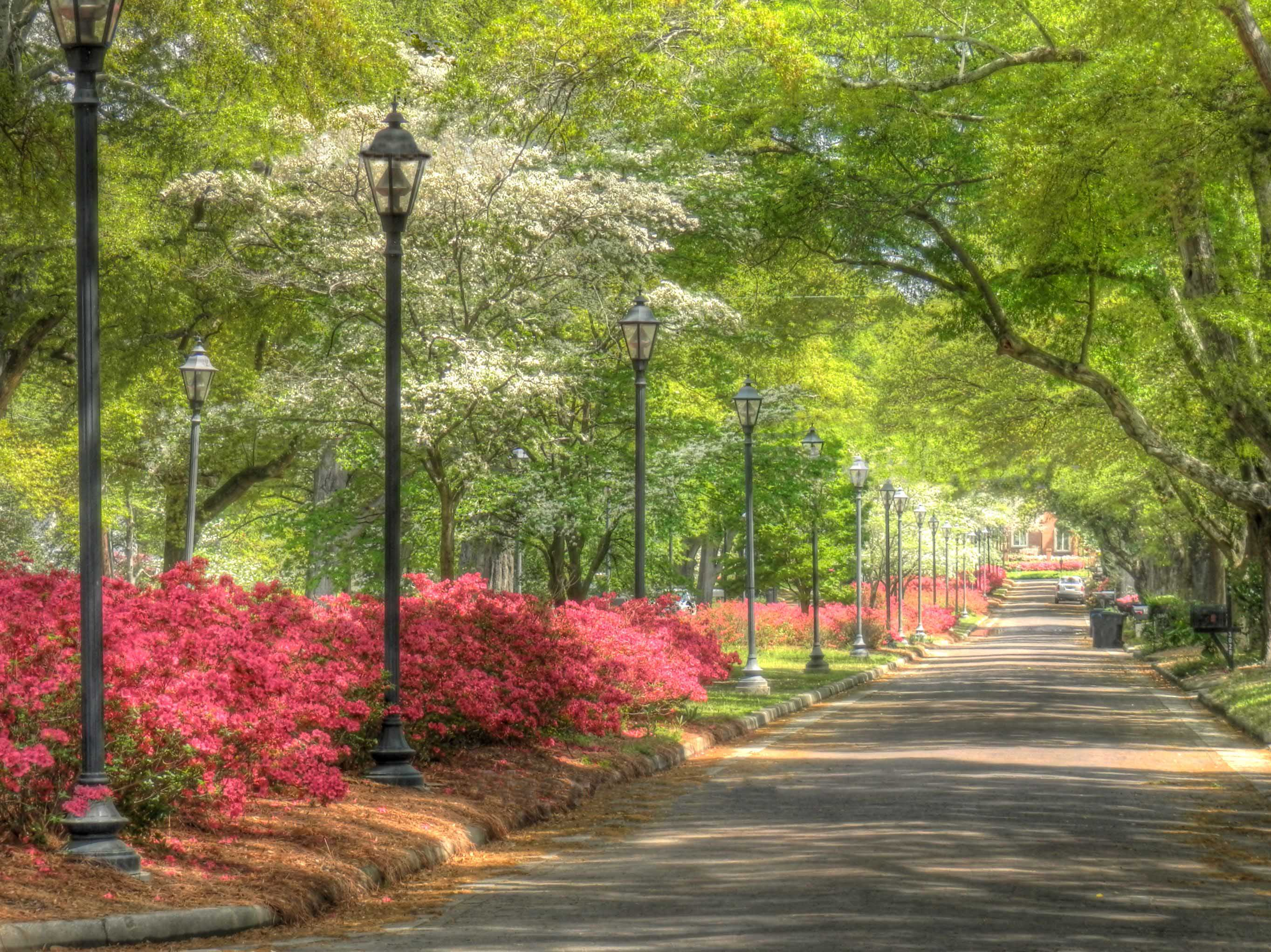 Springtime In Augusta And Macon Georgia