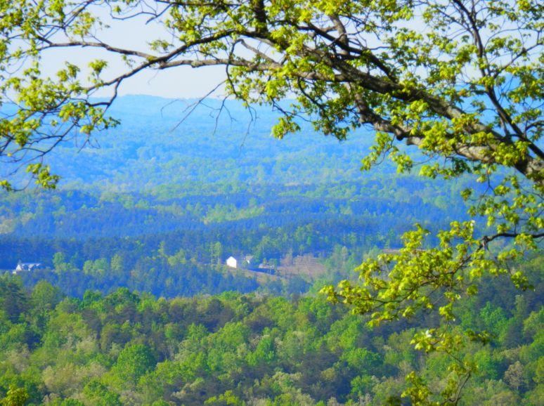 Western Piedmont Plateau