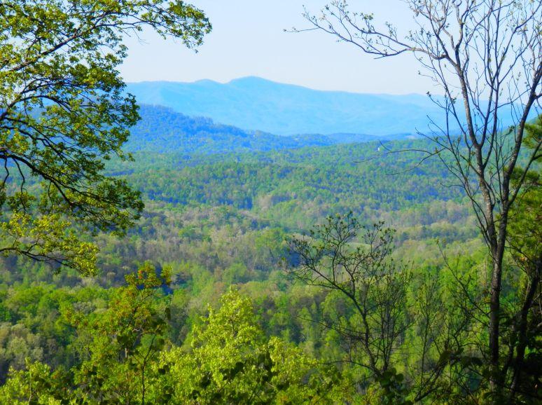 Tryon Mountain Vista