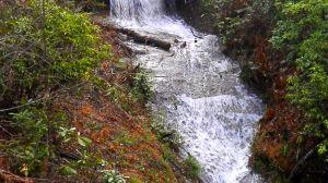 High Lodges Falls