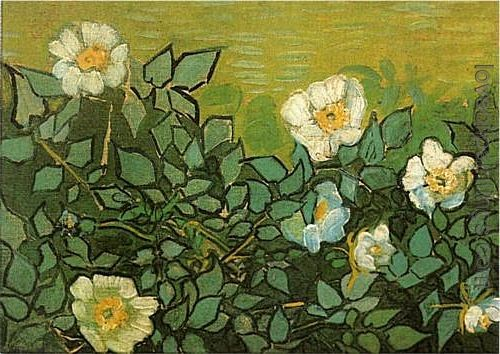 Van Gogh Wild Roses