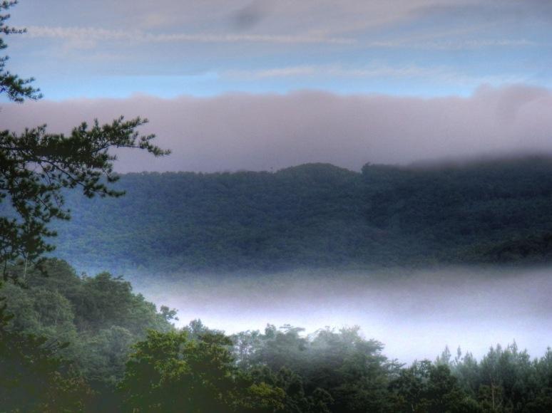Coon Gap Fog