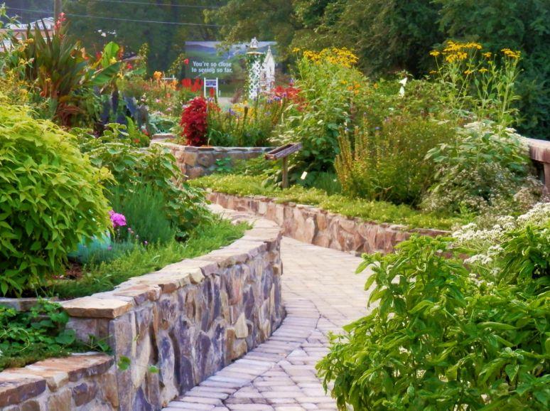 Wildflower Path