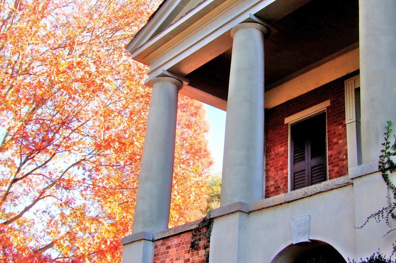 Davidson College Autumn