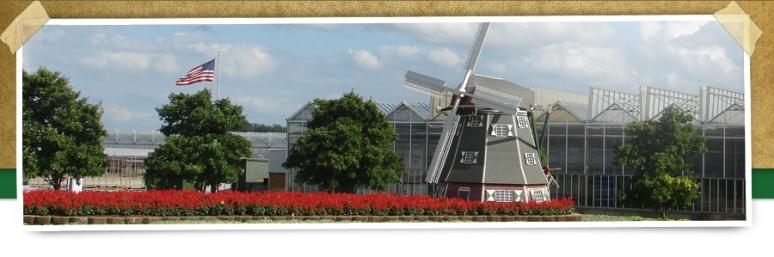 Metrolina Greenhouses 4