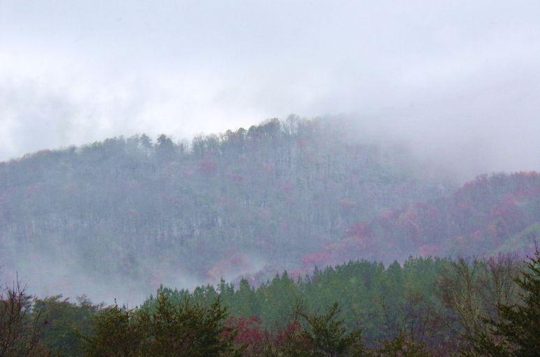 Blue Ridge Escarpment snow