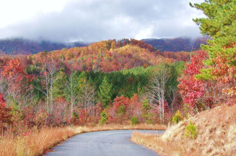 Wolf Pen Ridges in Fall