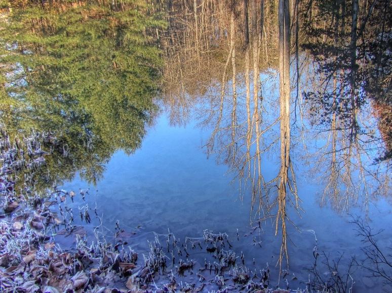 Otter Creek Pond Ice