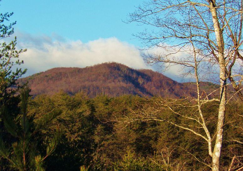 Roan Horsetop Mountain
