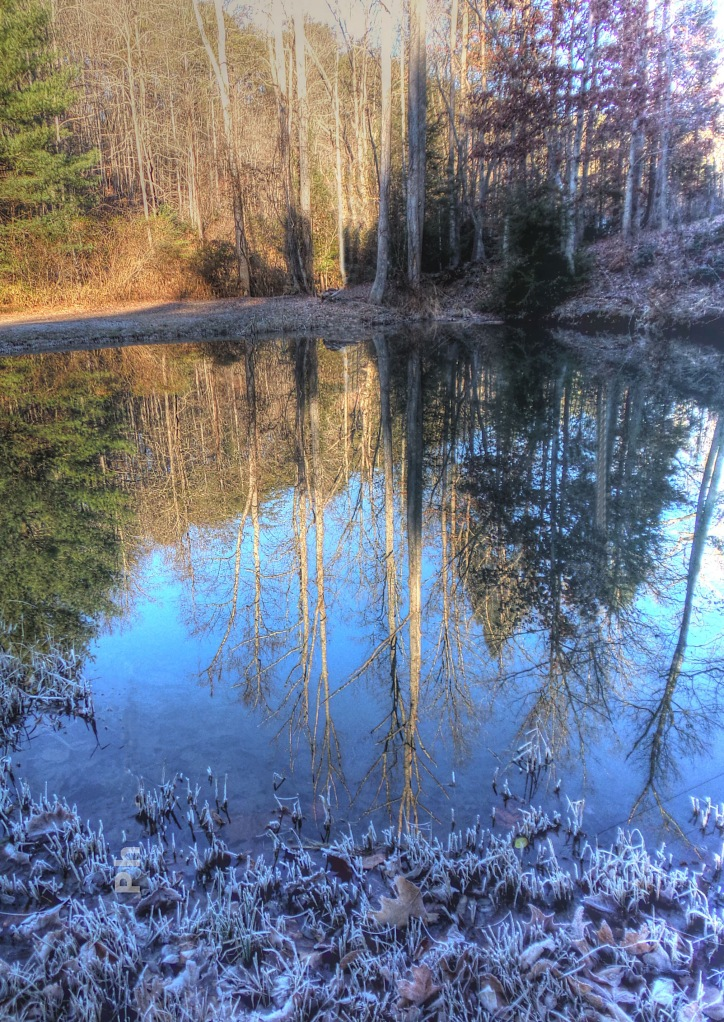 Otter Creek Icy Reflection