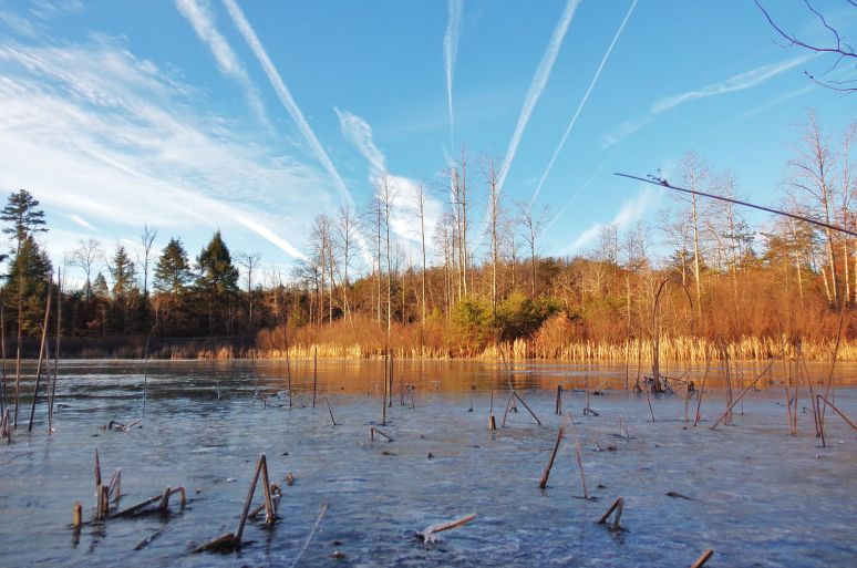 Frozen Otter Pond with Contrails