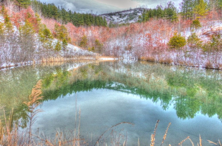 High Lodges Pond Reflections