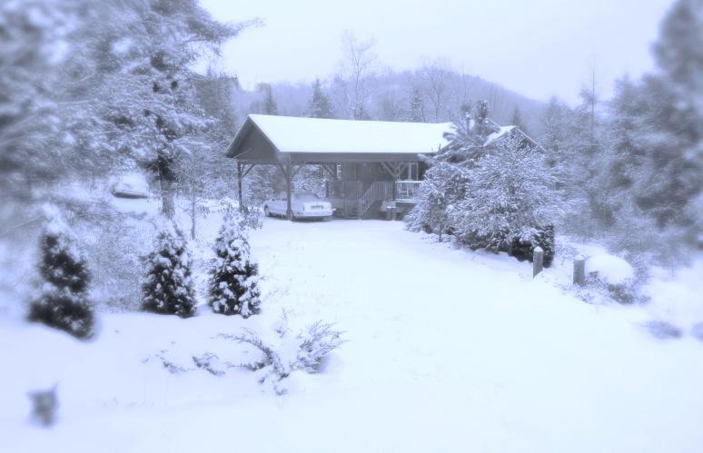Hemlock House Dawn