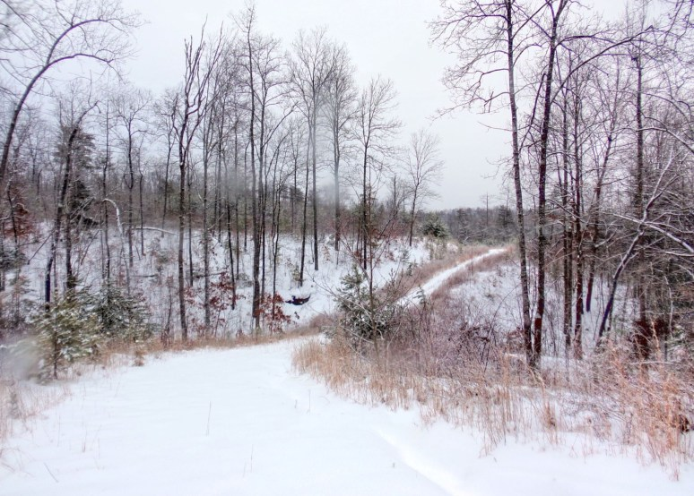 Otter Creek Valley Road