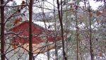Forest Hemlock House