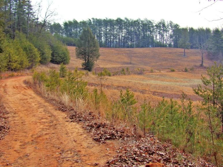 Otter Creek Hillside Farm