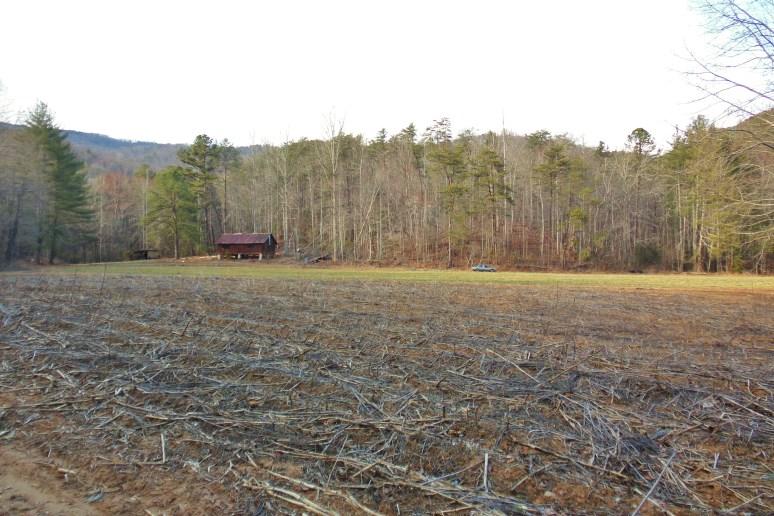 Otter Creek Corn Field