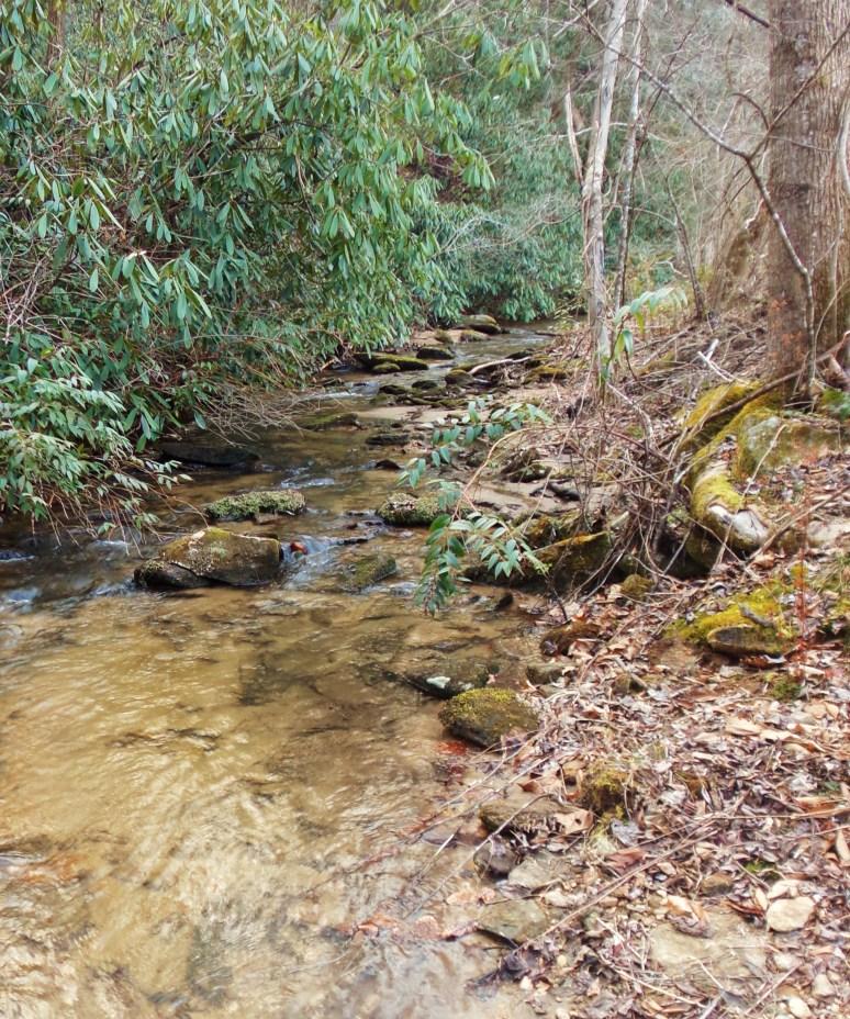 Upper Otter Creek