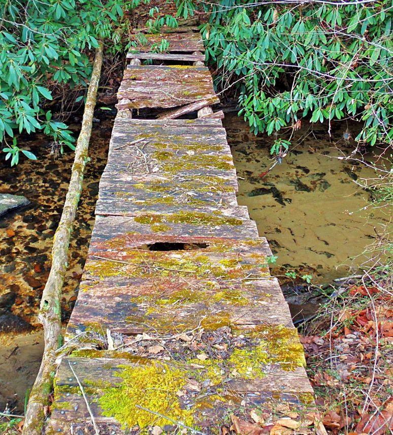 Otter Creek Walkbridge
