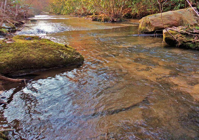 Otter Creek Flats