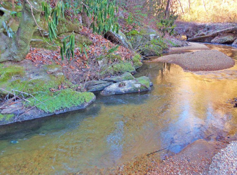 Otter Creek Gorge