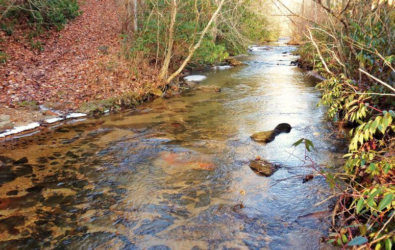 Otter Creek Reflections