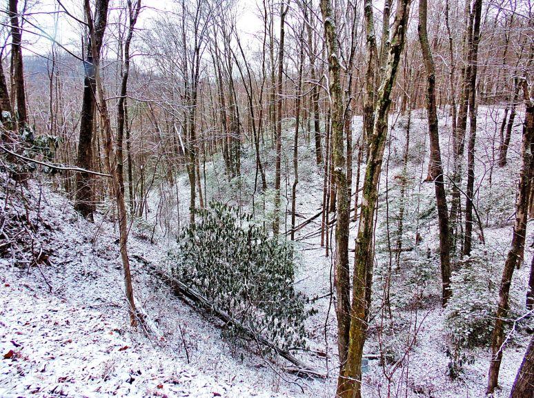 Snow Ravine