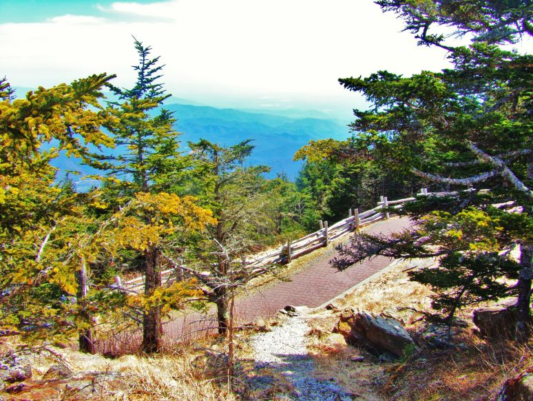 Mt. Mitchell Northeast View