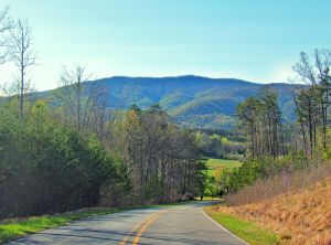 Hickory Nut Mountain Road