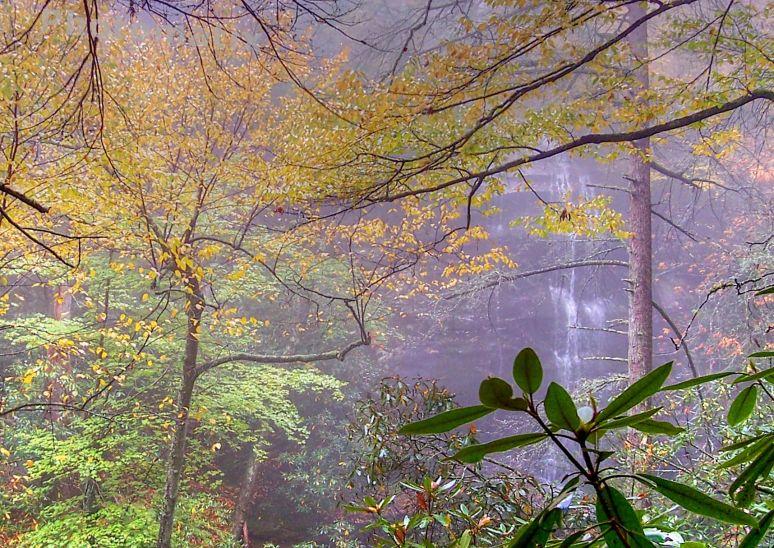 Catawba Falls in a dream
