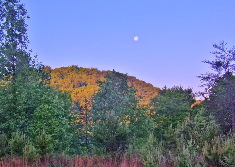 Moon over Dick's Mountain