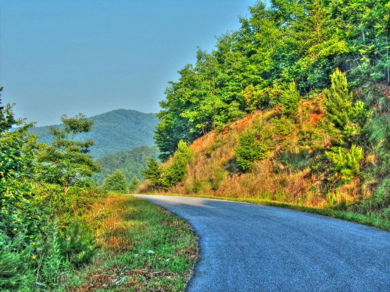 Roan Horsetop Hillside