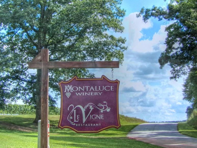 Montaluce Vineyard