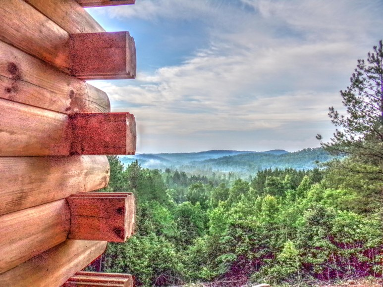 Brushy Top Log Home View