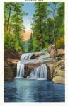 Bottomless Pools Postcard
