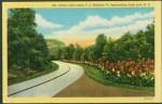Lake Lure postcard road1