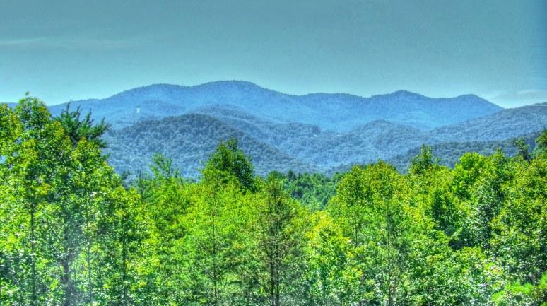 Stone Mountain Vista