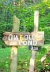 On Golden Pond Farm