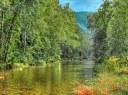 Pigeon River Smoky Mountains