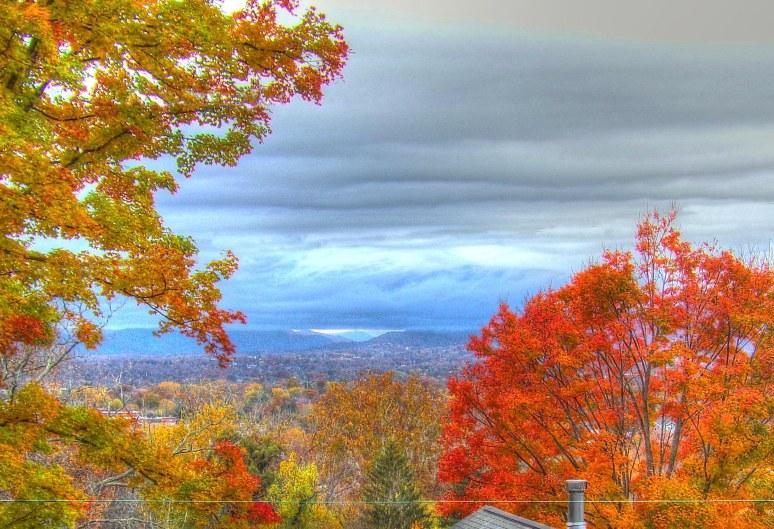 Asheville Fall Vista