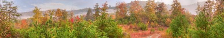 Brushy Top Panoramic fall