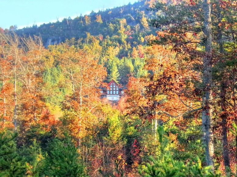 Brusy Top Log Home