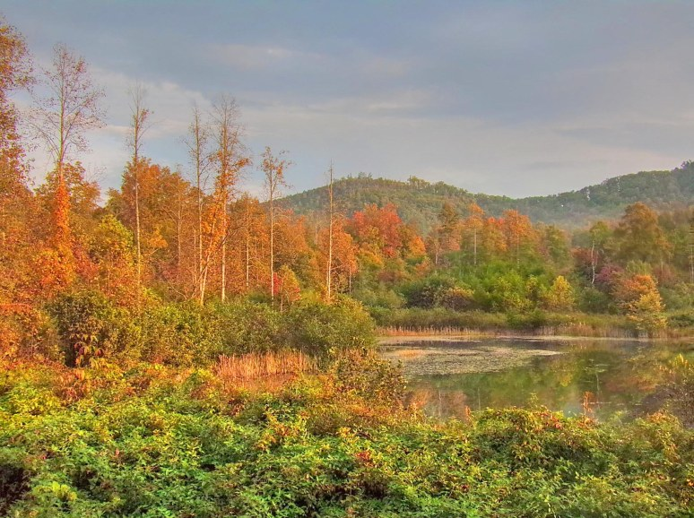 Otter Pond and Brushy Top in fall